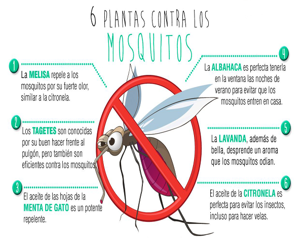 repelente de mosquitos natural
