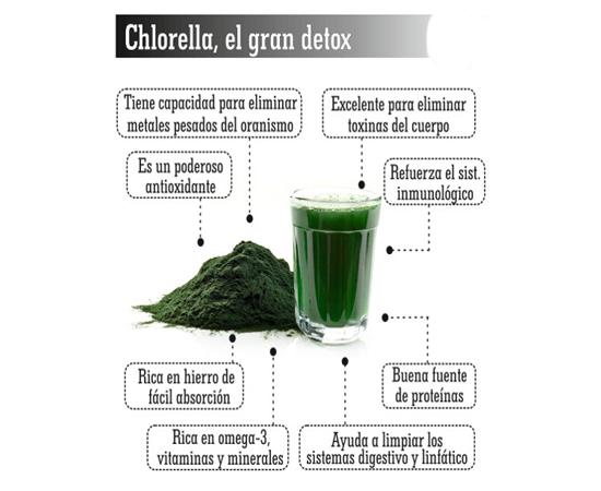 propiedades de las algas comestibles